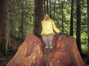 Christina Ogunsuyi: Location- Mount Rainier National Park, Washington state