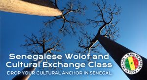 Wolof Language and Senegalese Cultural Exchange Class